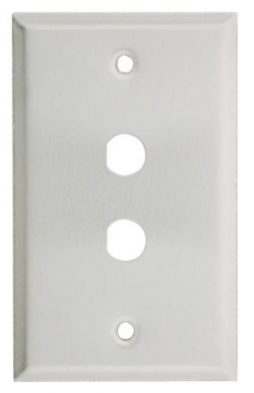 STAINLESS STEEL WALLPLATE 2 HO