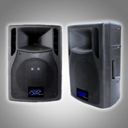 "12"" SPEAKER CABINET 2.5"" VC WOOFER, 180W AMPS, 2 UHF MIC"