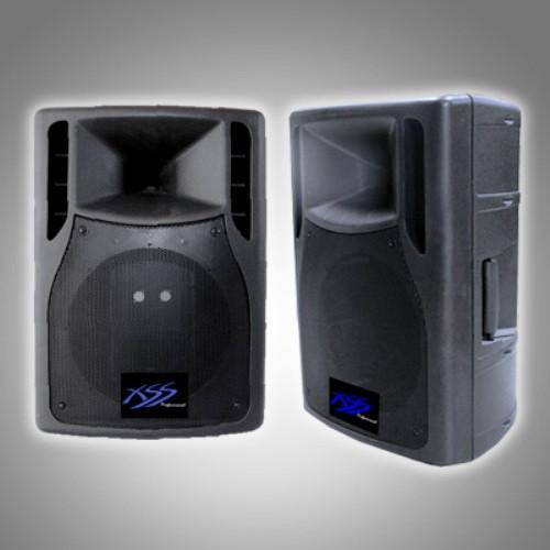 "12"" SPEAKER CABINET 2.5"" VC WOOFER, 180W AMPS, 2 UHF MIC"